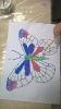 Solne motyle - zajęcia dla dzieci