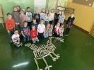 Dinozaury - nietypowa lekcja w klasach pierwszych_31